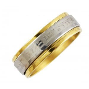 Stainless Steel Two Tone Shema Revolving Ring