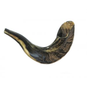 Small Ram's Horn Shofar for Kids - Dark Colors