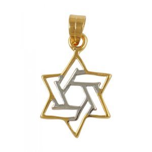 Gold Filled Two Color Star of David Pendant